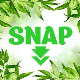 SNAP icon